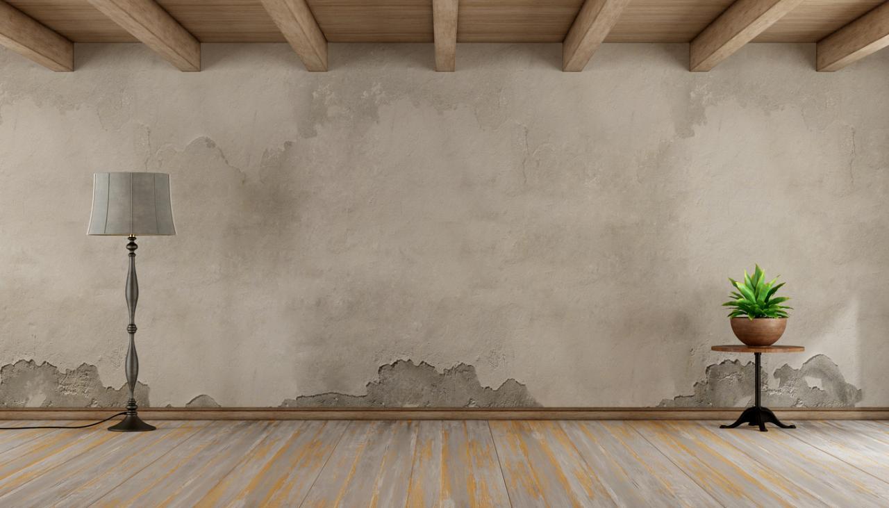 Perawatan Rumah & Pencegahan Masalah: Tips Mencegah Penjamuran pada Dinding
